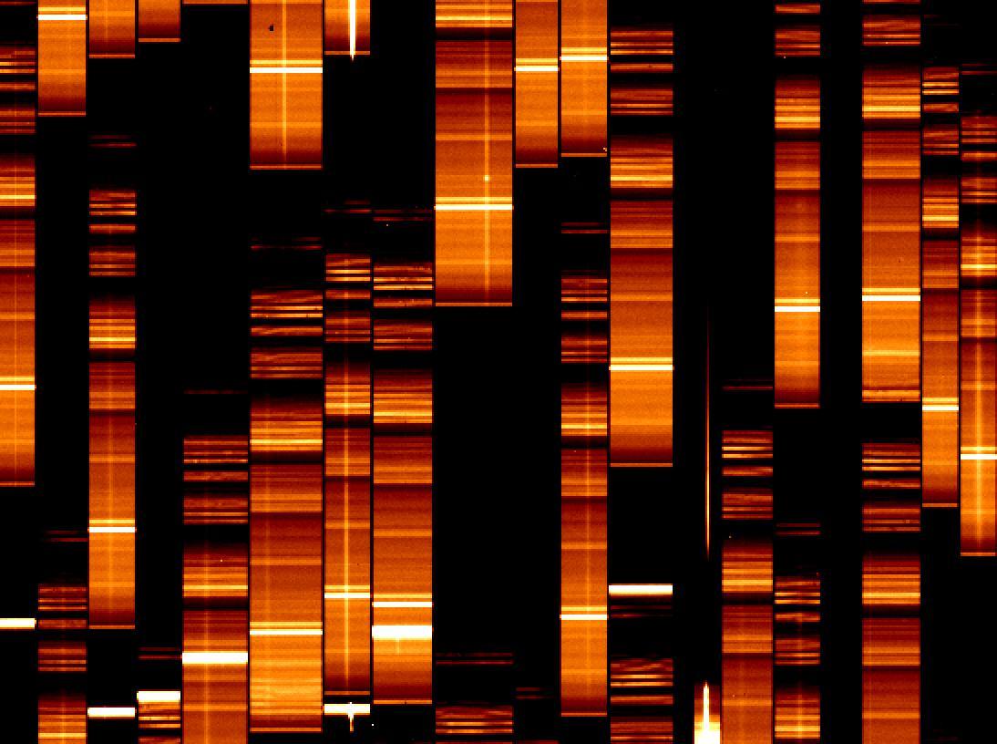 Zoom into VIMOS spectroscopic frame